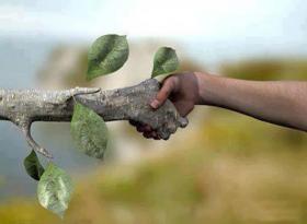 Przyroda zamyka się na ludzi