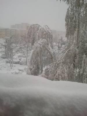 Kwietniowa zima