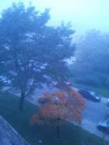 Mgła i bolesna melancholia. Rondo